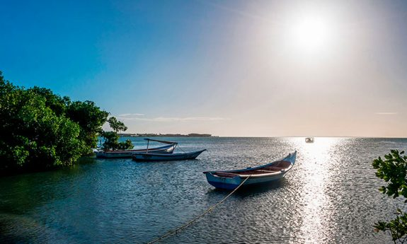 ¿El nombre 'Isla de Margarita' lo creó un gerundés?