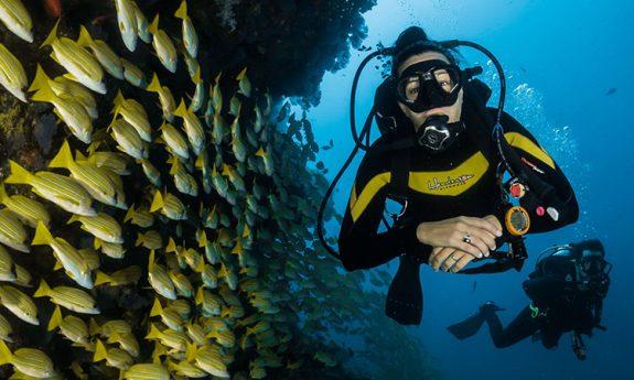Conocer el Caribe y el Mediterráneo, desde abajo